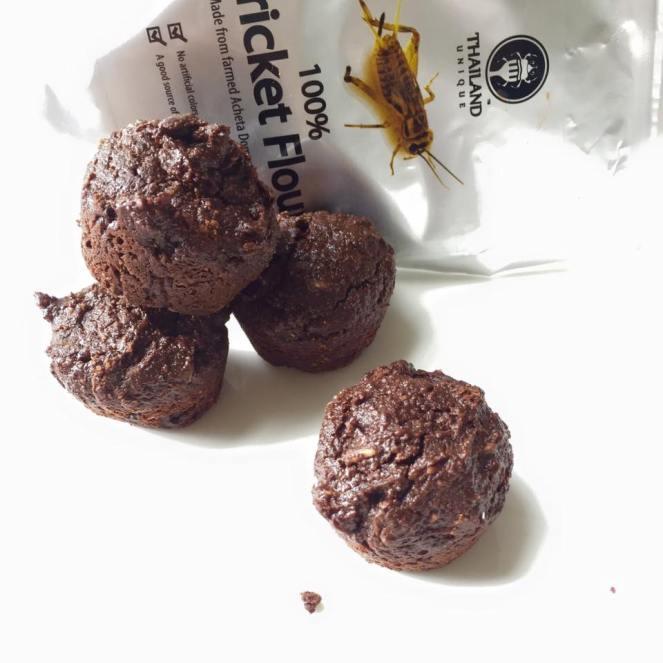 bugs brownies